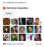 Google+ Followers Gadget