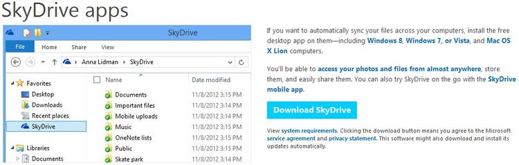 Microsoft SkyDrive Cloud Storage