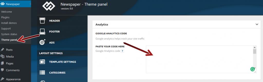 Tagdiv Newspaper Google Analytics option